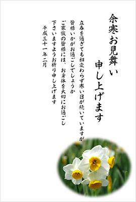 水仙の写真が綺麗なシンプルで使いやすい